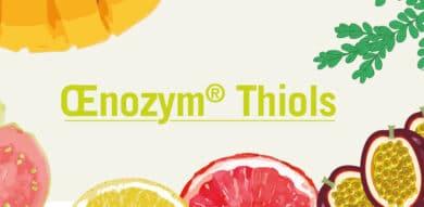 Œnozym<sup>®</sup> Thiols : rafraîchissez vos vins durant l'élevage